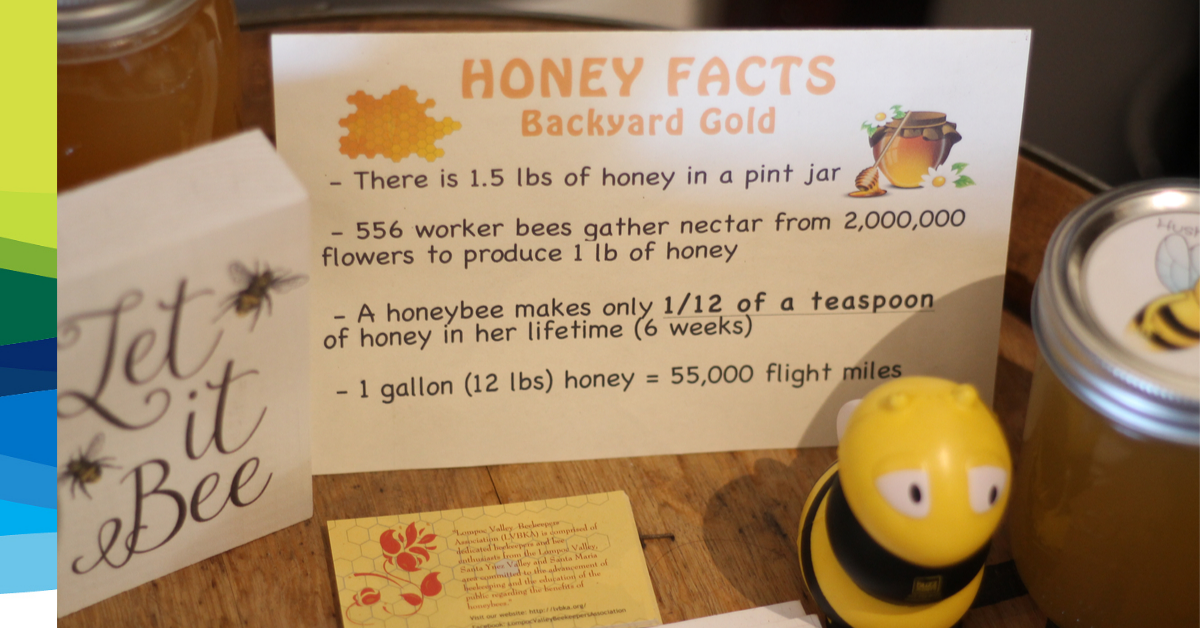 An index card with four facts about honeybees.